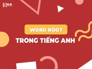 Word root trong tiếng Anh và cách học word root hiệu quả
