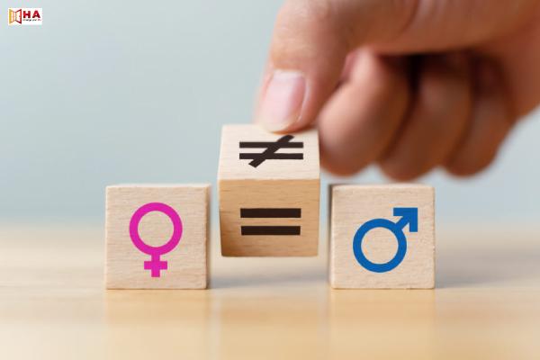 chủ đề gender equality