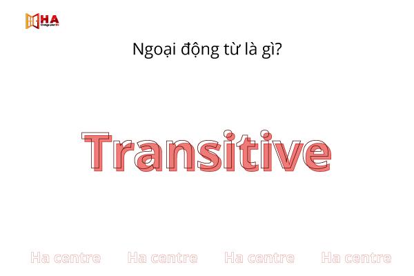 Ngoại động từ là gì? (Transitive Verbs)